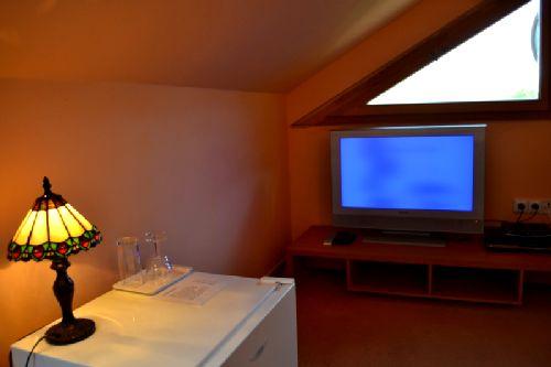 Pokoje jsou vybaveny televizí a lednicí