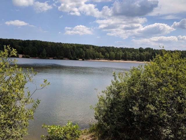 Veselské pískovny - pohled na vodní plochu