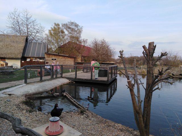 Vyhlídka na vodní plochu v Zooparku Milíčov