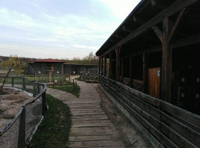 Pohled na dřevěnou stezku v Zooparku Milíčov