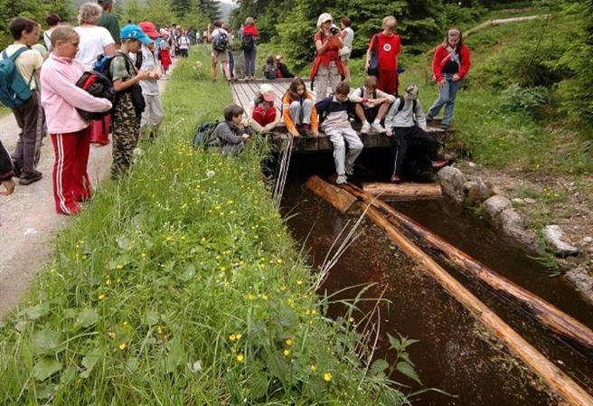 Plavení dříví na Schwarzenberském plavebním kanálu a Hiršperské slavnosti
